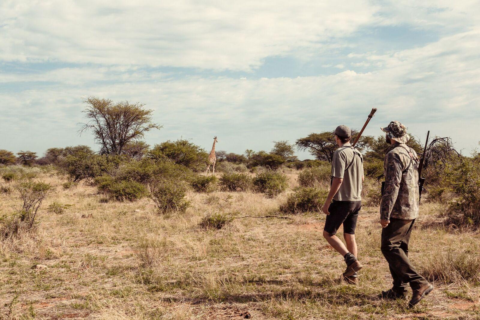 Namibia Polowanie Selekcyjne (2)