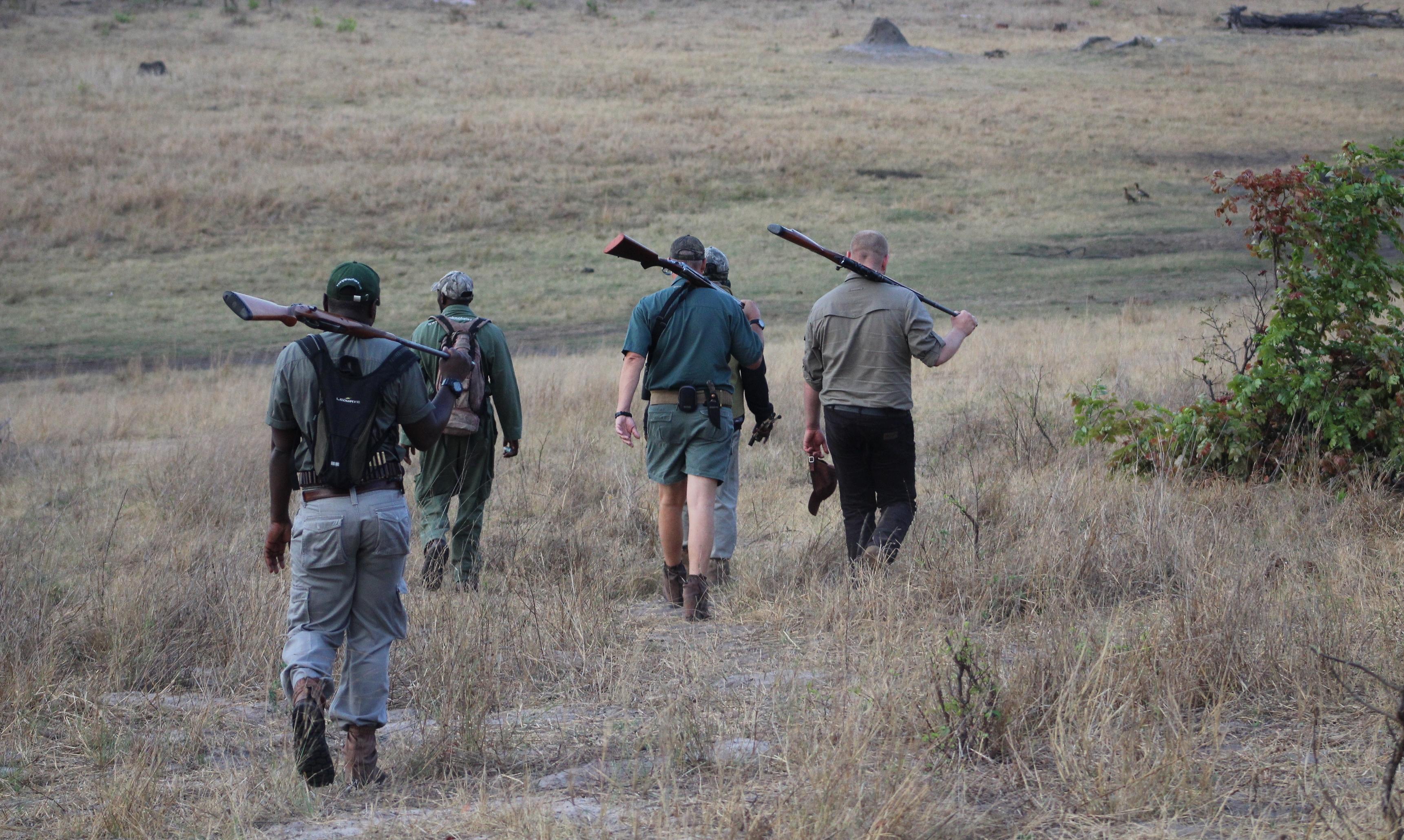 Zimbabwe Bawoły (5)