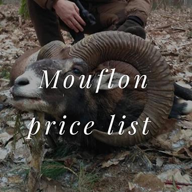 Offers_Mouflons_Mouflon_price_list_thubnail