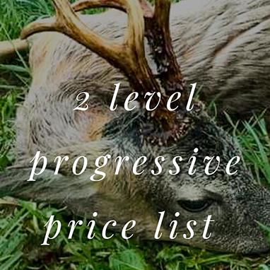 Offers_Roebucks_2_Level_progressive_price_list_thubnail