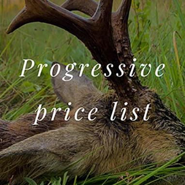 Offers_Roebucks_Progressive_price_list_thubnail